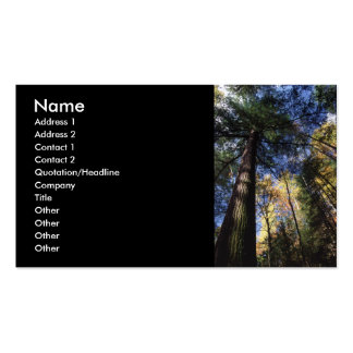 profile or business card, old growth business card