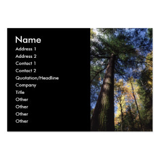 profile or business card, old growth large business card