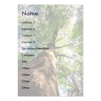profile or business card, old growth tree large business card
