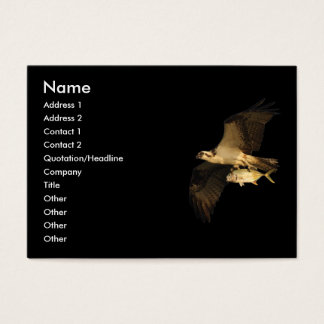 profile or business card, osprey business card