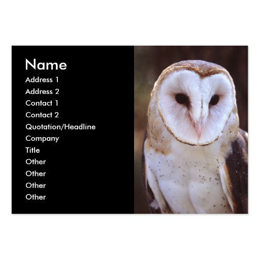 profile or business card, owl large business cards (Pack of 100)