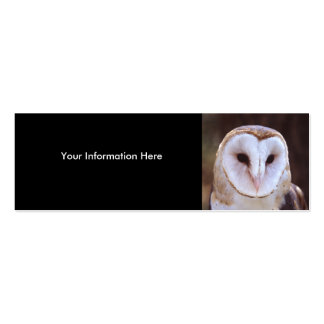profile or business card, owl pack of skinny business cards