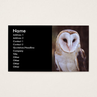 profile or business card, owl business card