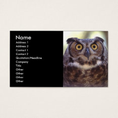 profile or business card, owl business card at Zazzle
