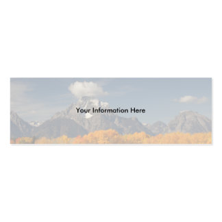 profile or business card, oxbow bend Double-Sided mini business cards (Pack of 20)
