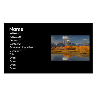 profile or business card, oxbow bend Double-Sided standard business cards (Pack of 100)
