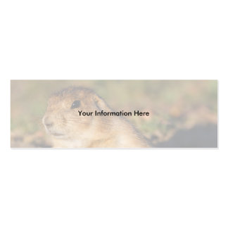 profile or business card, prairie dog Double-Sided mini business cards (Pack of 20)
