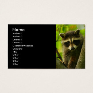 profile or business card, raccoon business card