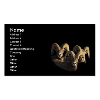 profile or business card, rams Double-Sided standard business cards (Pack of 100)
