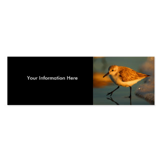 profile or business card, sand piper Double-Sided mini business cards (Pack of 20)