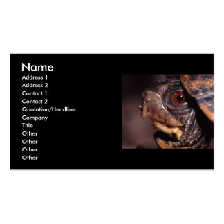 profile or business card, turtle Double-Sided standard business cards (Pack of 100)