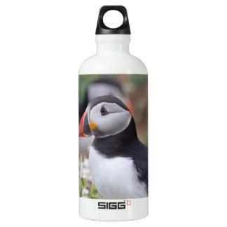 Profile Puffin Aluminum Water Bottle