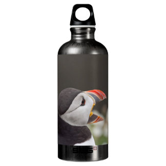 Profile Puffin with Beak Open Water Bottle