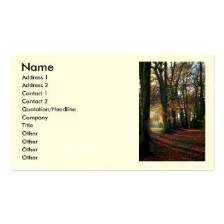 Profundamente en las tarjetas del negocio/del tarjetas de visita
