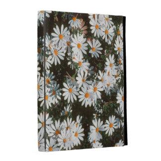 Profusión de las tarimas blancas (Asteraceae)