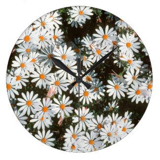 Profusion Of White Daises (Asteraceae) Clocks