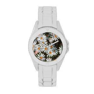 Profusion Of White Daises (Asteraceae) Watches