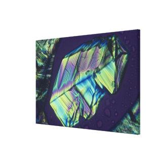 Progesterone crystals canvas print