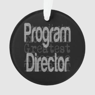 Program Director Extraordinaire Ornament
