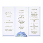 Programa triple, azul del boda del Hydrangea