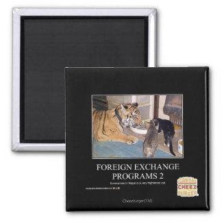 Programas de divisas 2 imán cuadrado