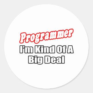 Programmer...Big Deal Classic Round Sticker