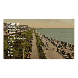 Promenade looking east, Clacton-on-Sea, England cl Double-Sided Standard Business Cards (Pack Of 100)
