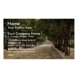 Promenade looking towards Queen's Hotel, Cheltenha Double-Sided Standard Business Cards (Pack Of 100)
