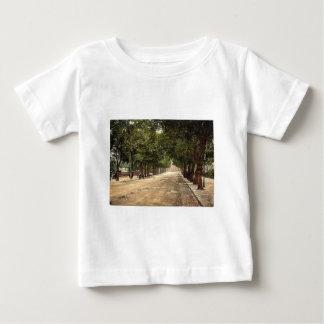 """""""promenade"""" que mira hacia el hotel de la reina, camisas"""