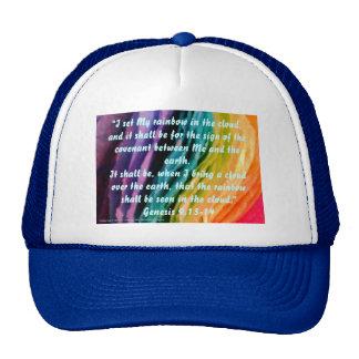 Promesa del arco iris gorro