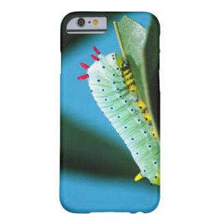 Prometheus Moth Caterpillar, Callosamia Barely There iPhone 6 Case
