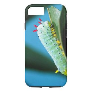 Prometheus Moth Caterpillar, Callosamia iPhone 8/7 Case