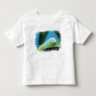 Prometheus Moth Caterpillar, Callosamia Toddler T-shirt