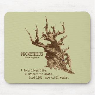 PROMETHEUS: Muerte de Scientifc de un árbol Tapetes De Ratón