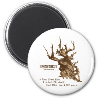 Prometheus: Scientifc Death of a Tree Refrigerator Magnets