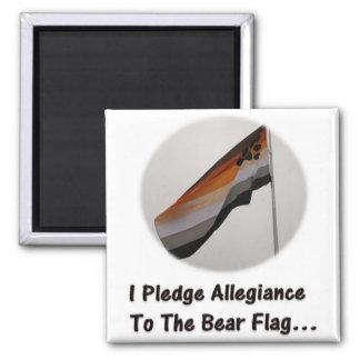 Prometo lealtad a la bandera del oso imán cuadrado