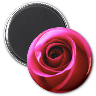 Promise Rose Refrigerator Magnet