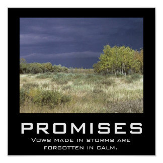 PROMISES POSTER