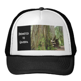 Promoted to Grandpa sports caps baseball hats
