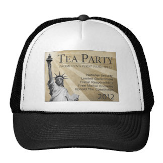 Promoting First Principles Mesh Hat