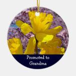 Promovido a la abuela adorna las flores de los nar ornamentos para reyes magos