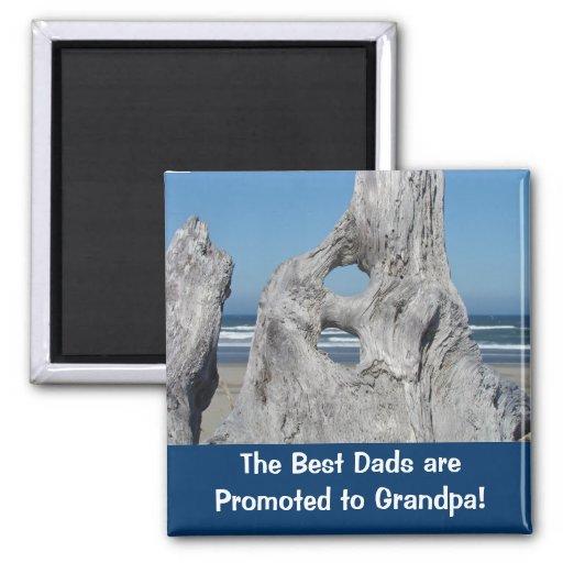 Promueven a los mejores papás al océano de los ima imanes para frigoríficos