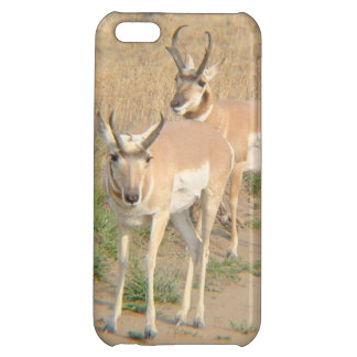 Pronghorn Antelope! Case For iPhone 5C
