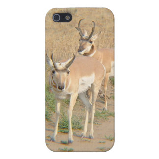 Pronghorn Antelope! iPhone SE/5/5s Case