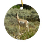 Pronghorn at Grand Teton National Park Ceramic Ornament