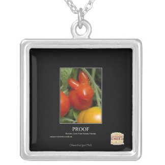 Proof Silver Plated Necklace