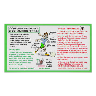 Proper Tick Removal Poster Lyme disease Prevention