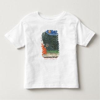 Properties of the Sky Toddler T-shirt