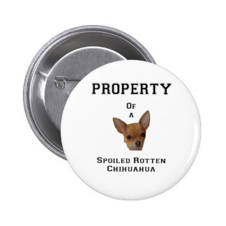 Property of a Spoiled Rotten Chihuahua Buttons