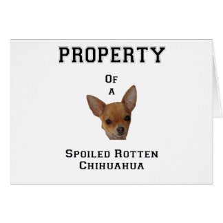 Property of a Spoiled Rotten Chihuahua Greeting Card
